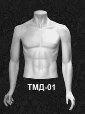 Серия торсы мужские ТМД 01