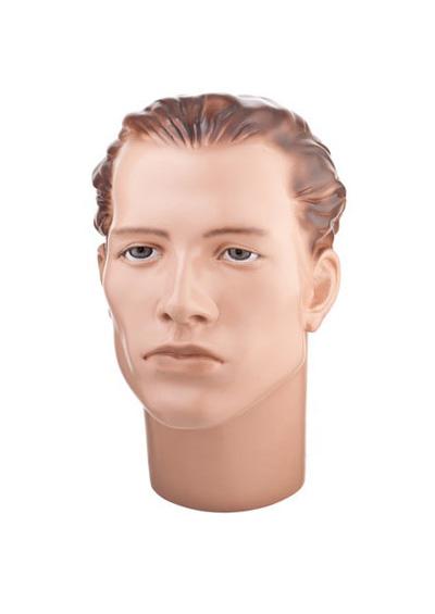 Голова мужского манекена Арсений