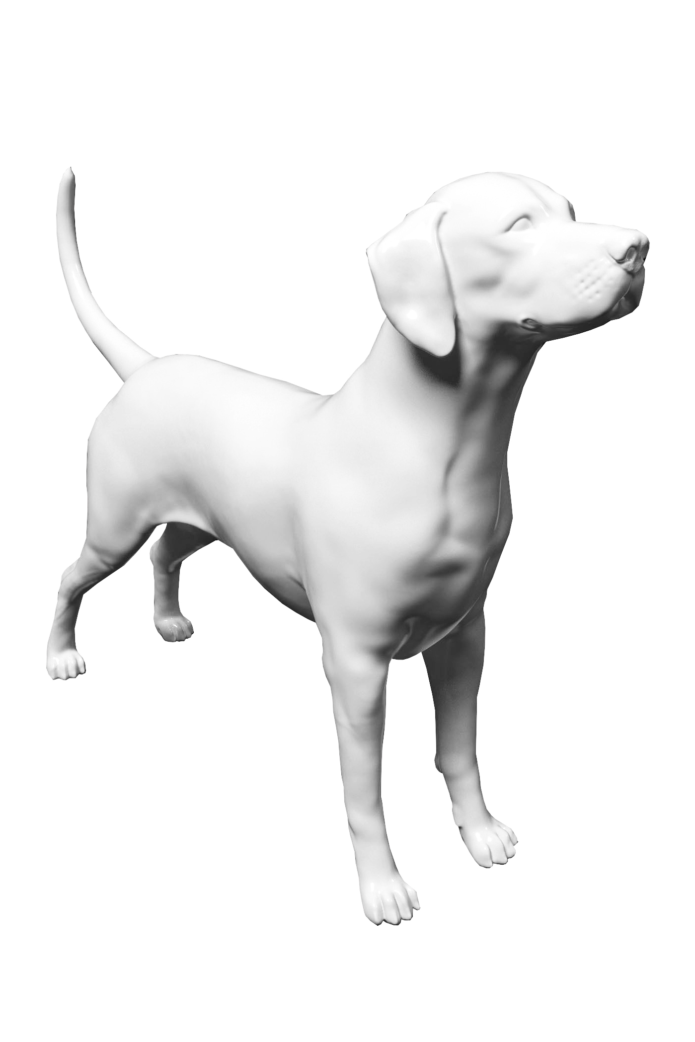 Манекены животных, собаки