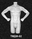 Серия торсы мужские ТМДФ 02