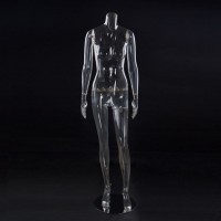 Женский манекен без головы прозрачный