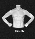 Серия торсы мужские ТМД 02